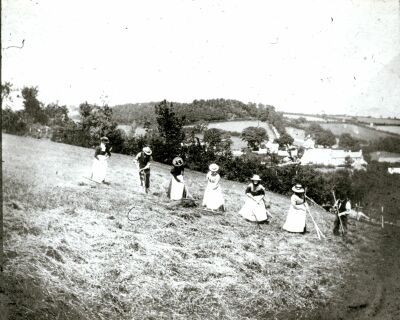 cribyn--raking-hay-pre-1914