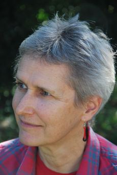 Author Pic Alis Hawkins copy